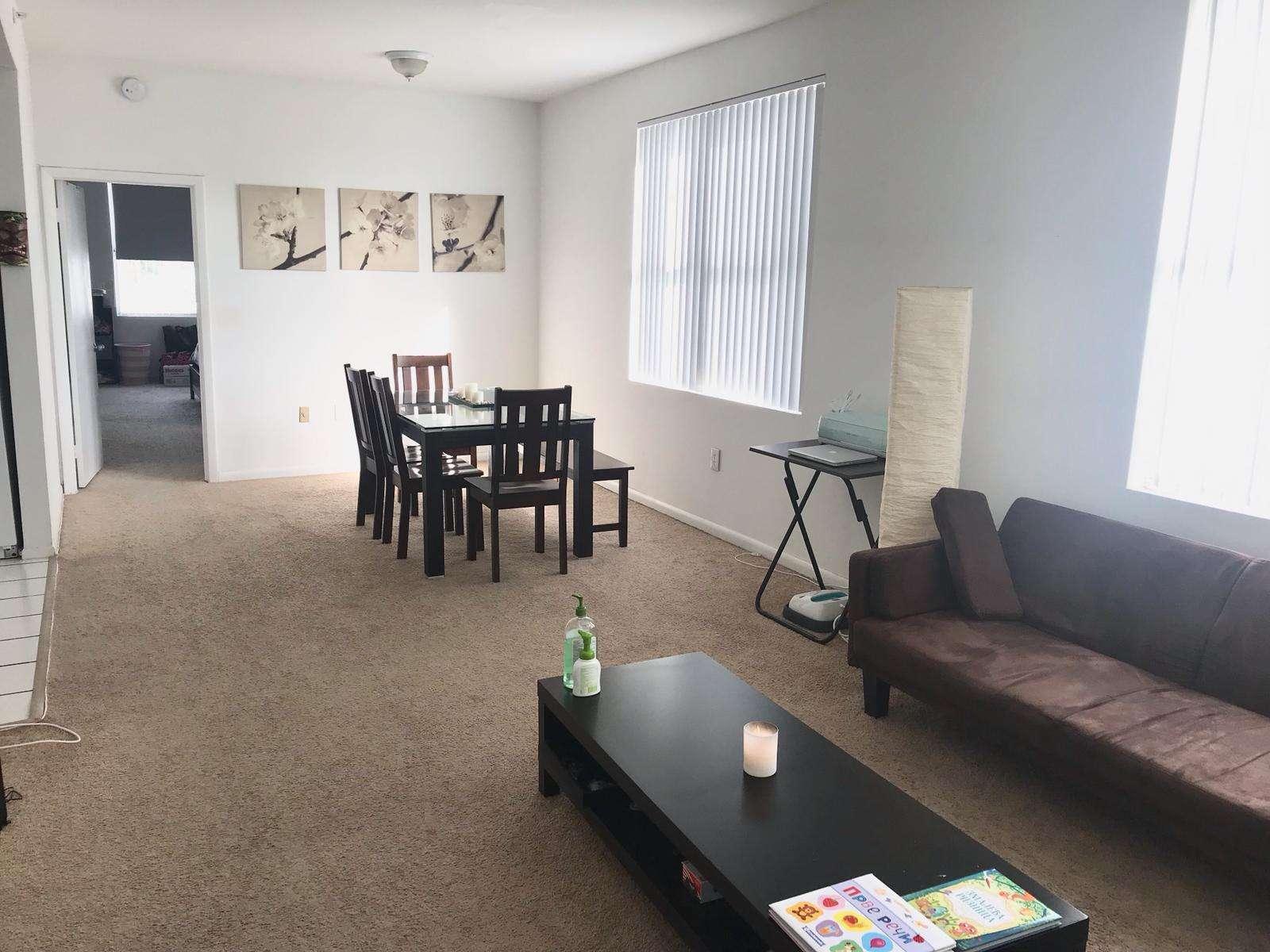 Izdaje se namešten dvosoban stan na Miami Beachu, cena 1600$!
