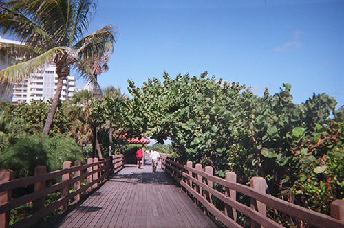 miami glasnik miami beach boardwalk